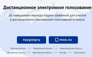 Как принять участие в дистанционном онлайн-голосовании в ГосДуму