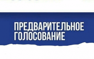 Как зарегистрироваться на предварительное электронное голосование «Единой России»