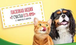 Промо акция Friskies «У счастья есть имя!» — регистрация чека и розыгрыш призов